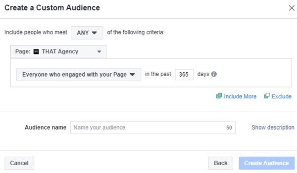 Facebook Custom Audience | Social Media Platform | THAT Agency