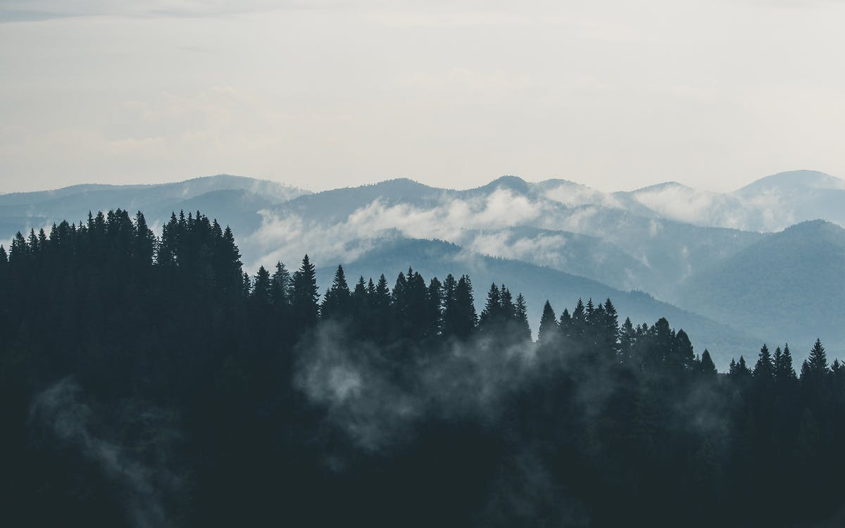 mountains-clouds-forest-fog.jpg