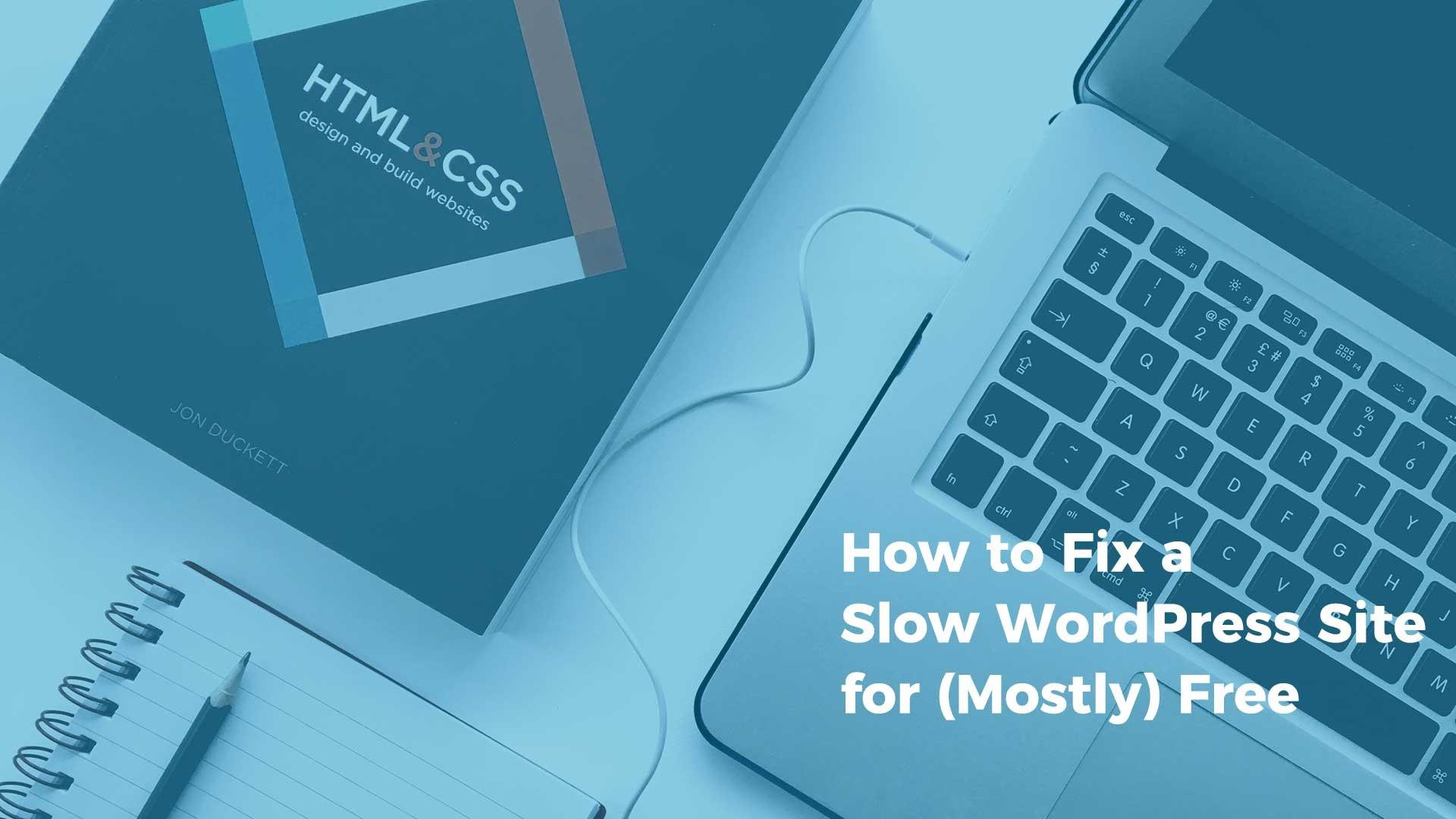 """Fix Slow WordPress Websites | Optimizing Images | Web Developer | THAT Agency"""