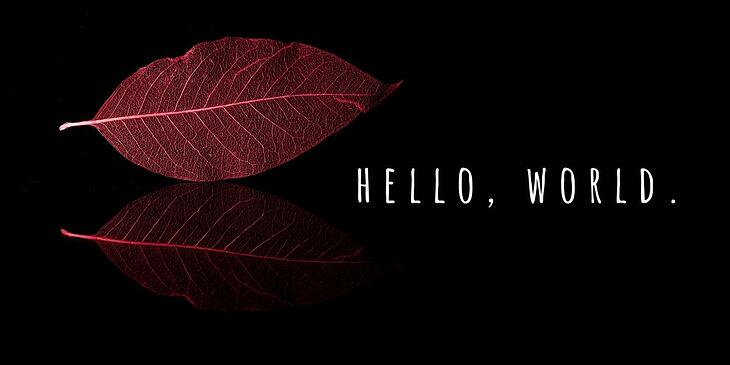website-designers-minimalism (1)