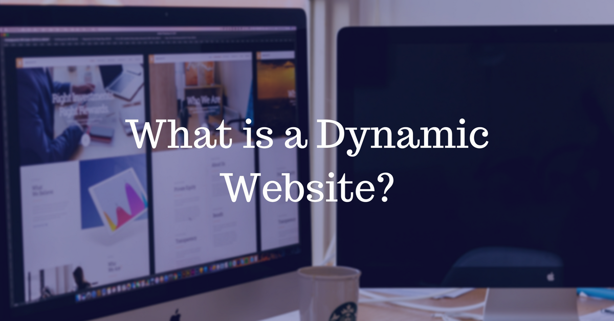 What is a Dynamic Website   THAT Agency
